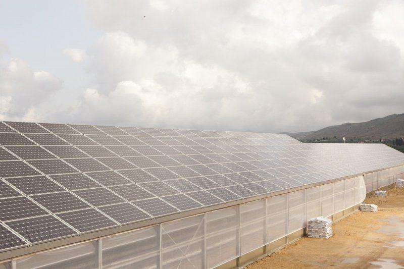 Serre con struttura in acciaio e copertura con pannelli fotovoltaici