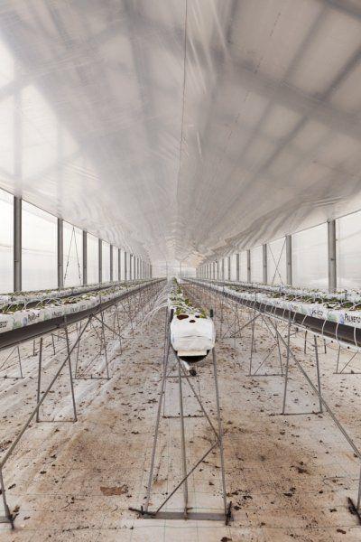 Struttura per coltivazione fuori suolo